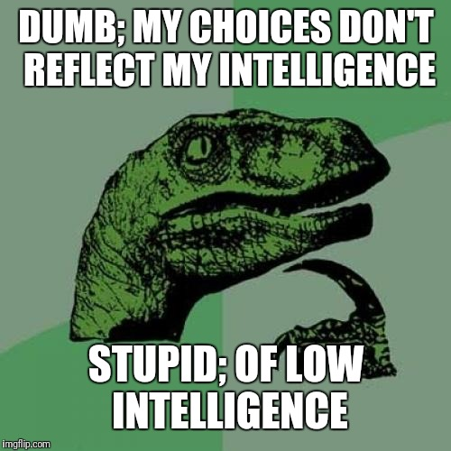 Philosoraptor Meme | DUMB; MY CHOICES DON'T REFLECT MY INTELLIGENCE STUPID; OF LOW INTELLIGENCE | image tagged in memes,philosoraptor | made w/ Imgflip meme maker