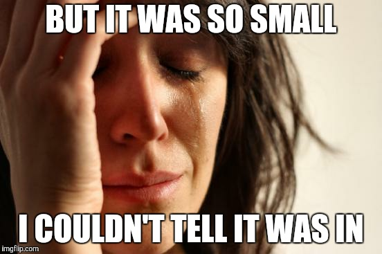 First World Problems Meme | BUT IT WAS SO SMALL I COULDN'T TELL IT WAS IN | image tagged in memes,first world problems | made w/ Imgflip meme maker