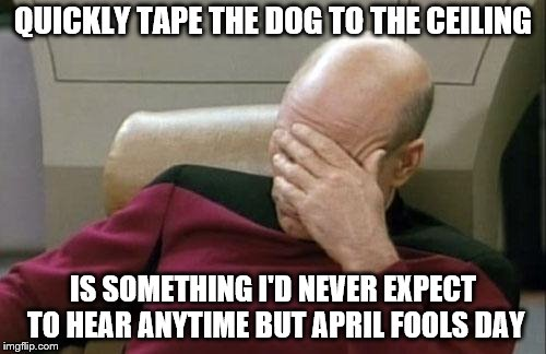 Maybe at summercamp | QUICKLY TAPE THE DOG TO THE CEILING IS SOMETHING I'D NEVER EXPECT TO HEAR ANYTIME BUT APRIL FOOLS DAY | image tagged in memes,captain picard facepalm,dog,april fools | made w/ Imgflip meme maker