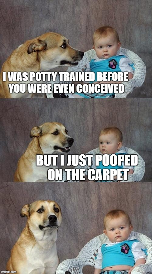 Dad Joke Dog Meme | I WAS POTTY TRAINED BEFORE YOU WERE EVEN CONCEIVED BUT I JUST POOPED ON THE CARPET | image tagged in memes,dad joke dog | made w/ Imgflip meme maker