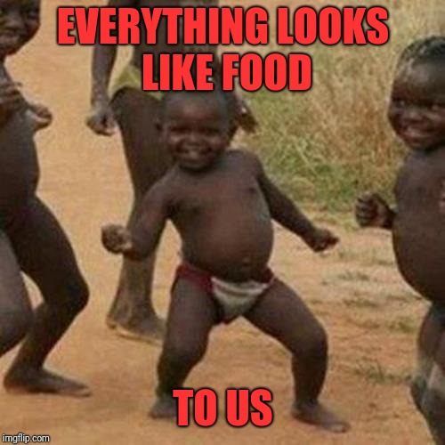 Third World Success Kid Meme | EVERYTHING LOOKS LIKE FOOD TO US | image tagged in memes,third world success kid | made w/ Imgflip meme maker