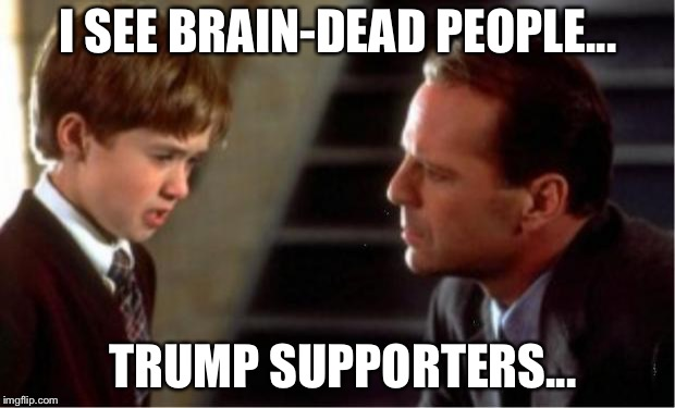 The Sixth Sense | I SEE BRAIN-DEAD PEOPLE... TRUMP SUPPORTERS... | image tagged in i see dead people | made w/ Imgflip meme maker