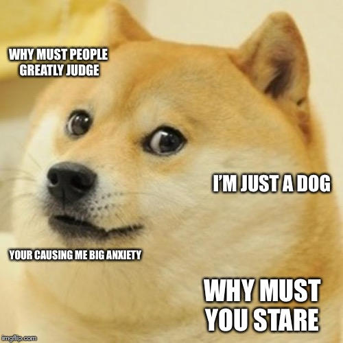 Doge Meme | WHY MUST PEOPLE GREATLY JUDGE I'M JUST A DOG YOUR CAUSING ME BIG ANXIETY WHY MUST YOU STARE | image tagged in memes,doge | made w/ Imgflip meme maker