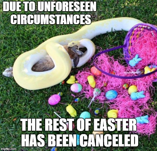 Happy Easter | DUE TO UNFORESEEN CIRCUMSTANCES THE REST OF EASTER HAS BEEN CANCELED | image tagged in easter,easter bunny,random | made w/ Imgflip meme maker