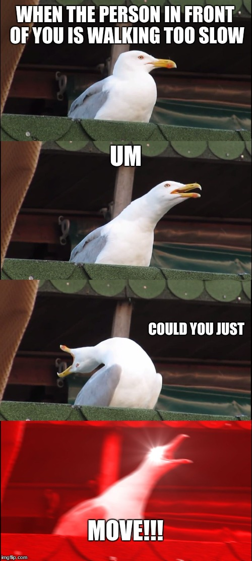 This happens all the time... maybe I'm just a fast walker  | WHEN THE PERSON IN FRONT OF YOU IS WALKING TOO SLOW UM COULD YOU JUST MOVE!!! | image tagged in memes,inhaling seagull,school,rude,walking | made w/ Imgflip meme maker