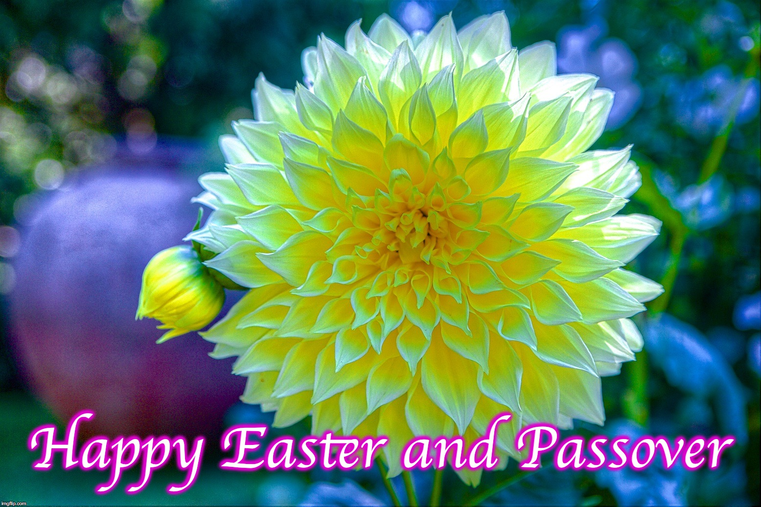 Happy Easter and Passover | image tagged in happy easter | made w/ Imgflip meme maker