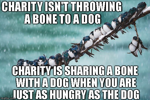 One day at a time | CHARITY ISN'T THROWING A BONE TO A DOG CHARITY IS SHARING A BONE WITH A DOG WHEN YOU ARE JUST AS HUNGRY AS THE DOG | image tagged in one day at a time | made w/ Imgflip meme maker