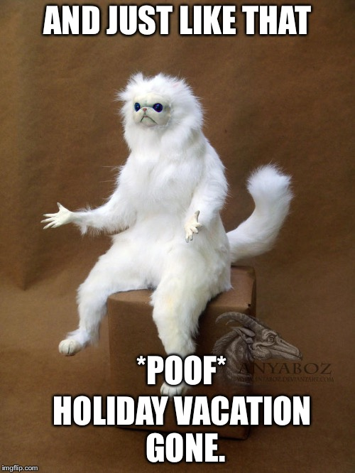 And just like that holiday vacation gone meme | AND JUST LIKE THAT HOLIDAY VACATION GONE. *POOF* | image tagged in grumpy cat,poof,memes | made w/ Imgflip meme maker