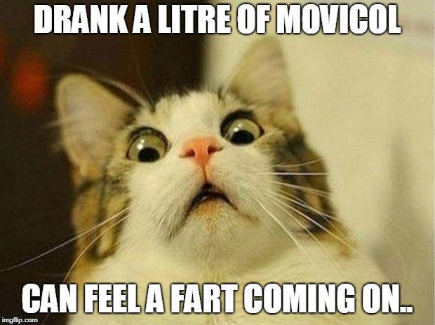 Scared Cat Meme | DRANK A LITRE OF MOVICOL CAN FEEL A FART COMING ON.. | image tagged in memes,scared cat | made w/ Imgflip meme maker