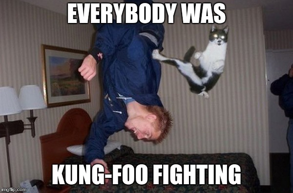 That cat was fast as lightning.  | EVERYBODY WAS KUNG-FOO FIGHTING | image tagged in memes,funny,kung fu kitten,bruce lee,see no one cares,the most interesting man in the world | made w/ Imgflip meme maker