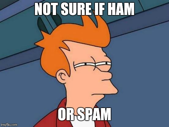 Futurama Fry Meme | NOT SURE IF HAM OR SPAM | image tagged in memes,futurama fry | made w/ Imgflip meme maker