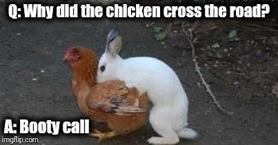 Easter eggs | Q: Why did the chicken cross the road? A: Booty