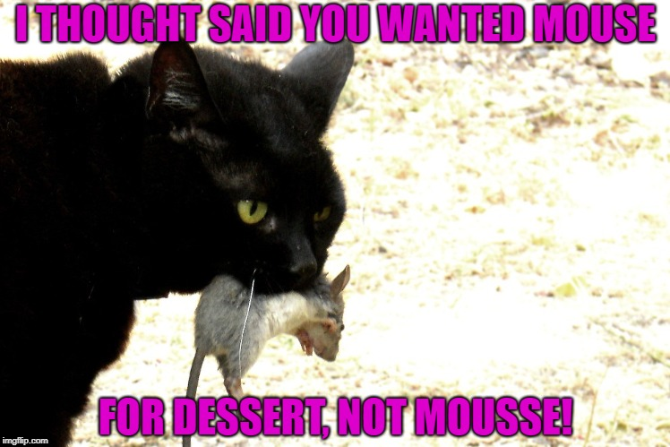 I THOUGHT SAID YOU WANTED MOUSE FOR DESSERT, NOT MOUSSE! | made w/ Imgflip meme maker