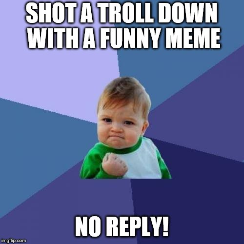 Success Kid Meme | SHOT A TROLL DOWN WITH A FUNNY MEME NO REPLY! | image tagged in memes,success kid | made w/ Imgflip meme maker