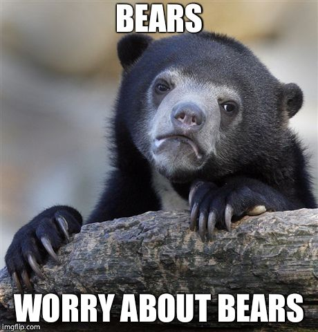 Confession Bear Meme | BEARS WORRY ABOUT BEARS | image tagged in memes,confession bear | made w/ Imgflip meme maker