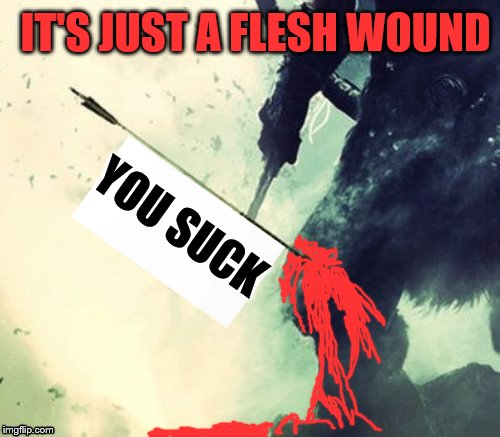 YOU SUCK IT'S JUST A FLESH WOUND | made w/ Imgflip meme maker