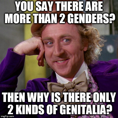 Well? | YOU SAY THERE ARE MORE THAN 2 GENDERS? THEN WHY IS THERE ONLY 2 KINDS OF GENITALIA? | image tagged in creepy condescending wonka large,gender | made w/ Imgflip meme maker