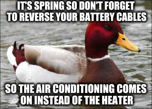 make actual bad advice mallard | IT'S SPRING SO DON'T FORGET TO REVERSE YOUR BATTERY CABLES SO THE AIR CONDITIONING COMES ON INSTEAD OF THE HEATER | image tagged in make actual bad advice mallard | made w/ Imgflip meme maker