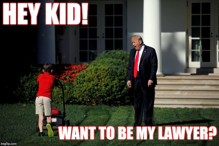 Next in line. | HEY KID! WANT TO BE MY LAWYER? | image tagged in angry trump lawn,lawyer,trump russia collusion,asshole | made w/ Imgflip meme maker
