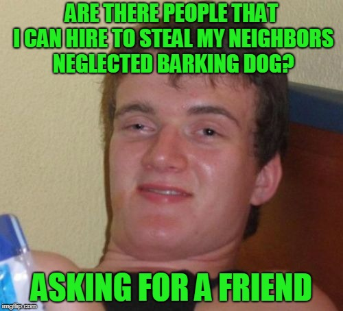 10 guy in stealth mode. | ARE THERE PEOPLE THAT I CAN HIRE TO STEAL MY NEIGHBORS NEGLECTED BARKING DOG? ASKING FOR A FRIEND | image tagged in memes,10 guy | made w/ Imgflip meme maker