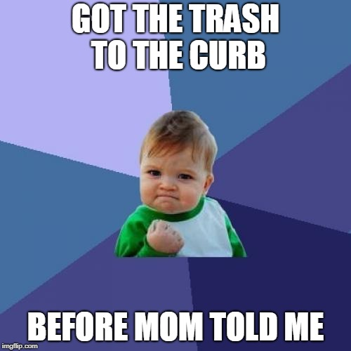 Success Kid Meme | GOT THE TRASH TO THE CURB BEFORE MOM TOLD ME | image tagged in memes,success kid | made w/ Imgflip meme maker