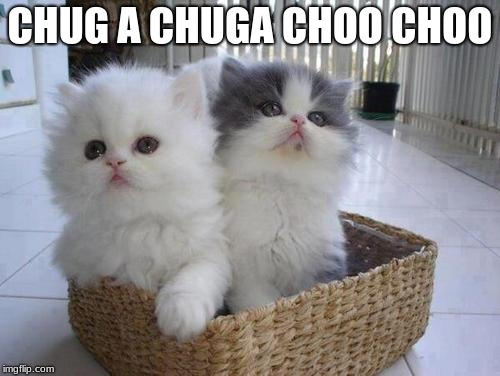 Kittens in a Basket | CHUG A CHUGA CHOO CHOO | image tagged in kittens in a basket | made w/ Imgflip meme maker