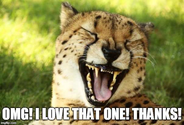 cheetah | OMG! I LOVE THAT ONE! THANKS! | image tagged in cheetah | made w/ Imgflip meme maker