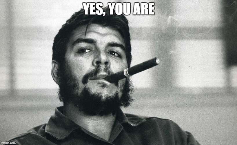Che | YES, YOU ARE | image tagged in che | made w/ Imgflip meme maker
