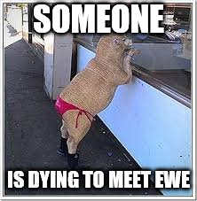 SOMEONE IS DYING TO MEET EWE | made w/ Imgflip meme maker