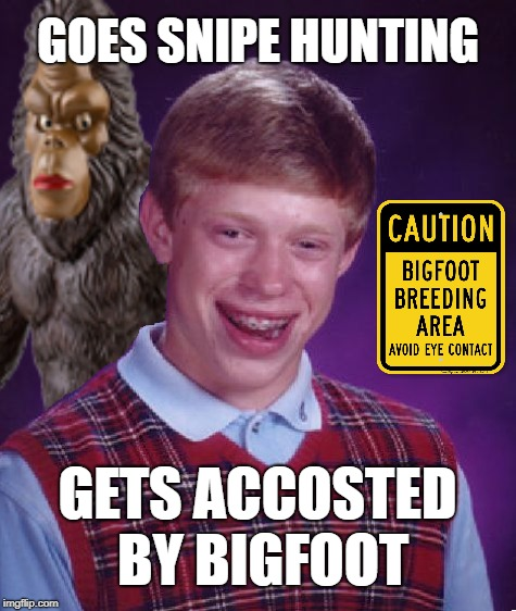 Brian in the woods | GOES SNIPE HUNTING GETS ACCOSTED BY BIGFOOT | image tagged in funny memes,bad luck brian,bigfoot,lost in the woods | made w/ Imgflip meme maker
