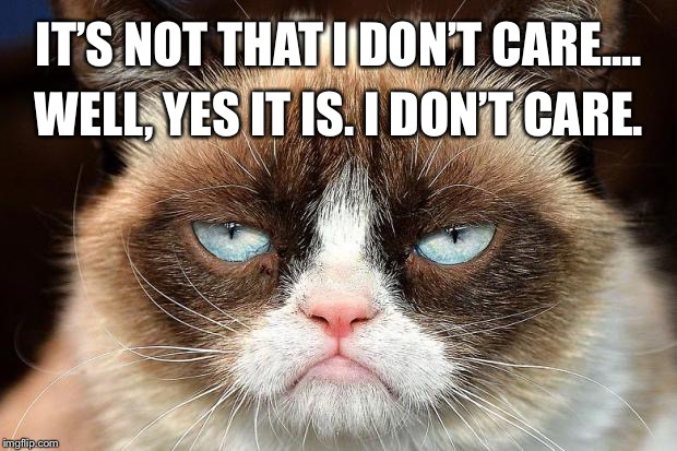 Grumpy Cat Not Amused Meme | IT'S NOT THAT I DON'T CARE.... WELL, YES IT IS. I DON'T CARE. | image tagged in memes,grumpy cat not amused,grumpy cat | made w/ Imgflip meme maker