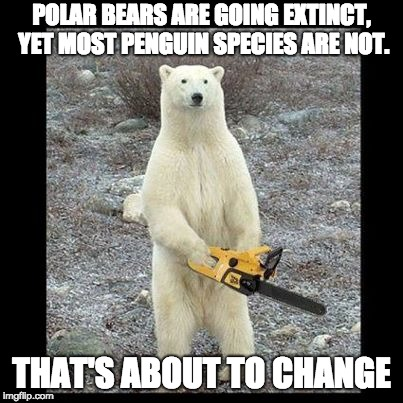 Chainsaw Bear Meme | POLAR BEARS ARE GOING EXTINCT, YET MOST PENGUIN SPECIES ARE NOT. THAT'S ABOUT TO CHANGE | image tagged in memes,chainsaw bear | made w/ Imgflip meme maker