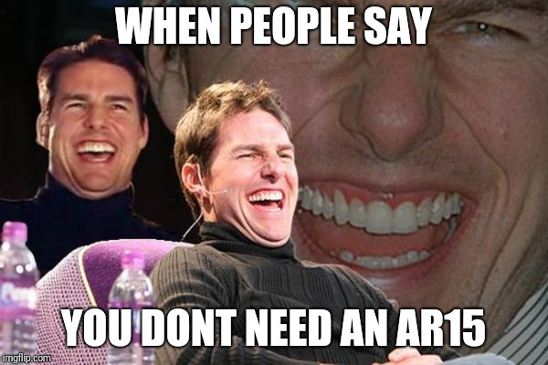 guns | WHEN PEOPLE SAY YOU DONT NEED AN AR15 | image tagged in guns | made w/ Imgflip meme maker
