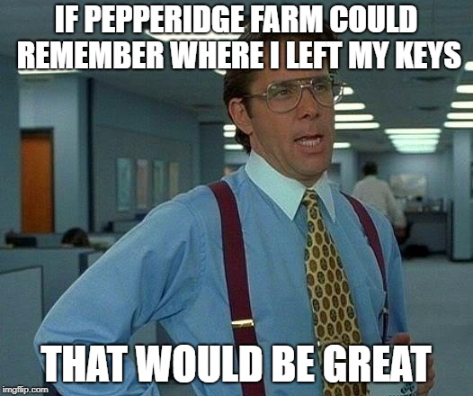 That Would Be Great Meme | IF PEPPERIDGE FARM COULD REMEMBER WHERE I LEFT MY KEYS THAT WOULD BE GREAT | image tagged in memes,that would be great | made w/ Imgflip meme maker