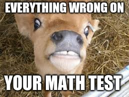 rage |  EVERYTHING WRONG ON; YOUR MATH TEST | image tagged in math test,cow,angry | made w/ Imgflip meme maker