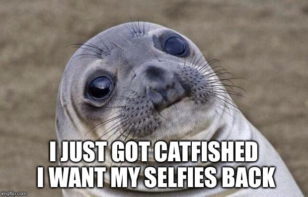 Awkward Moment Sealion Meme | I JUST GOT CATFISHED I WANT MY SELFIES BACK | image tagged in memes,awkward moment sealion | made w/ Imgflip meme maker