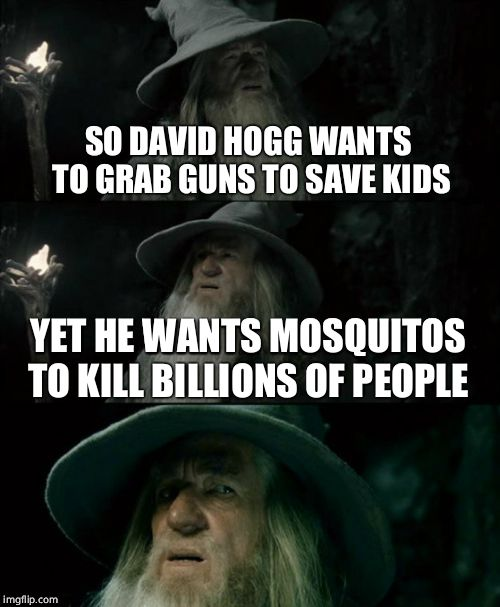 Confused Gandalf Meme | SO DAVID HOGG WANTS TO GRAB GUNS TO SAVE KIDS YET HE WANTS MOSQUITOS TO KILL BILLIONS OF PEOPLE | image tagged in memes,confused gandalf | made w/ Imgflip meme maker