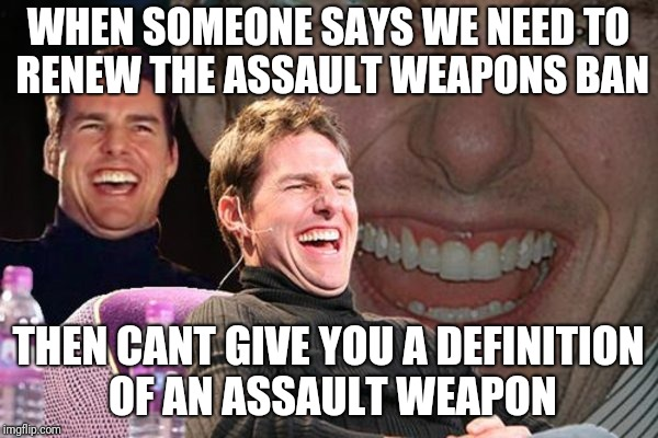 crazy t | WHEN SOMEONE SAYS WE NEED TO RENEW THE ASSAULT WEAPONS BAN THEN CANT GIVE YOU A DEFINITION OF AN ASSAULT WEAPON | image tagged in guns | made w/ Imgflip meme maker
