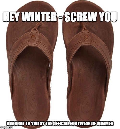 screw winter | HEY WINTER - SCREW YOU BROUGHT TO YOU BY THE OFFICIAL FOOTWEAR OF SUMMER | image tagged in flip flops,flips,flops,summer shoes,summer | made w/ Imgflip meme maker