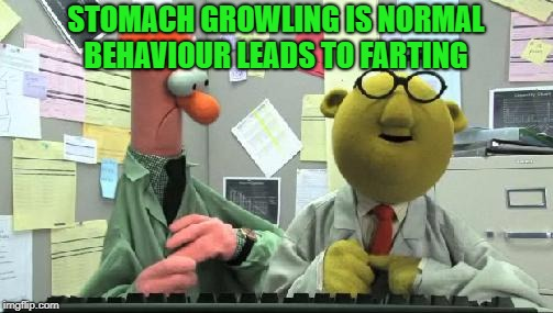 muppets  | STOMACH GROWLING IS NORMAL BEHAVIOUR LEADS TO FARTING | image tagged in muppets | made w/ Imgflip meme maker