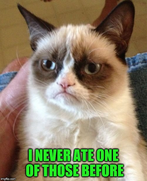 Grumpy Cat Meme | I NEVER ATE ONE OF THOSE BEFORE | image tagged in memes,grumpy cat | made w/ Imgflip meme maker