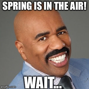 steve harvey | SPRING IS IN THE AIR! WAIT... | image tagged in steve harvey | made w/ Imgflip meme maker