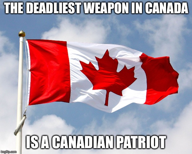 canadian flag | THE DEADLIEST WEAPON IN CANADA IS A CANADIAN PATRIOT | image tagged in canadian flag | made w/ Imgflip meme maker