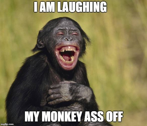 I AM LAUGHING MY MONKEY ASS OFF | image tagged in laughing,monkey,chimp,funny,monkey ass | made w/ Imgflip meme maker