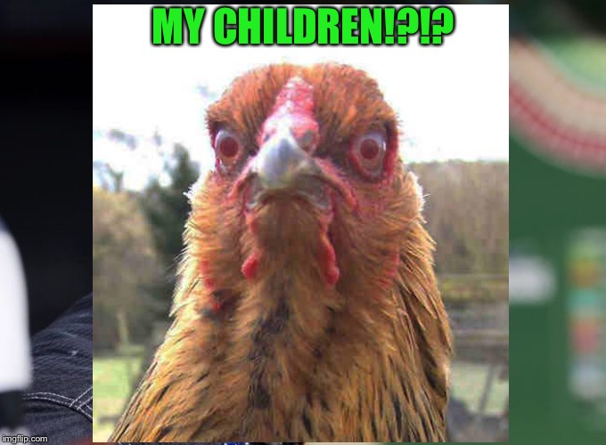 MY CHILDREN!?!? | made w/ Imgflip meme maker