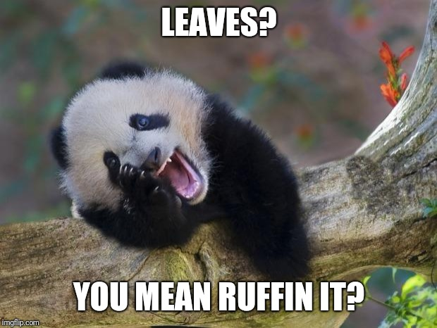 LEAVES? YOU MEAN RUFFIN IT? | made w/ Imgflip meme maker