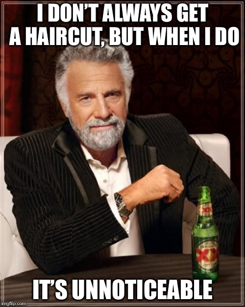 The Most Interesting Man In The World Meme | I DON'T ALWAYS GET A HAIRCUT, BUT WHEN I DO IT'S UNNOTICEABLE | image tagged in memes,the most interesting man in the world | made w/ Imgflip meme maker