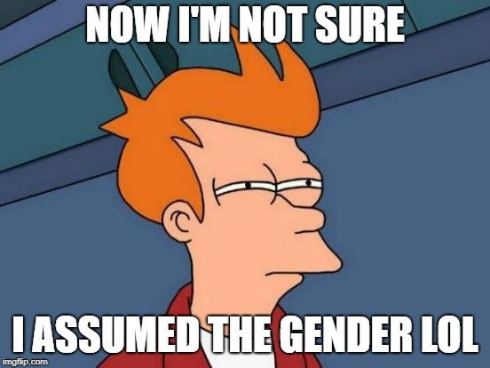 Futurama Fry Meme | NOW I'M NOT SURE I ASSUMED THE GENDER LOL | image tagged in memes,futurama fry | made w/ Imgflip meme maker
