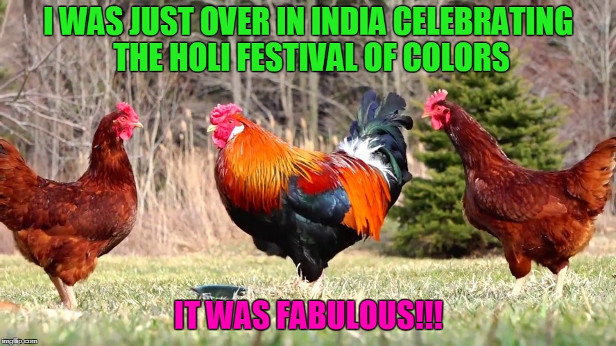 at least they weren't powdering me with the Colonel's secret spices (Chicken Week, April 2-8, a JBmemegeek & giveuahint event) | I WAS JUST OVER IN INDIA CELEBRATING THE HOLI FESTIVAL OF COLORS IT WAS FABULOUS!!! | image tagged in memes,chicken week,chickens,india | made w/ Imgflip meme maker