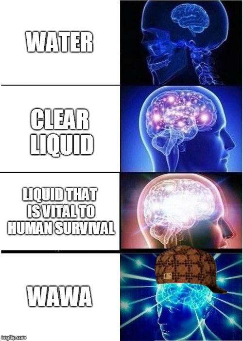 Water or Wawa | WATER CLEAR LIQUID LIQUID THAT IS VITAL TO HUMAN SURVIVAL WAWA | image tagged in memes,expanding brain,scumbag,water | made w/ Imgflip meme maker